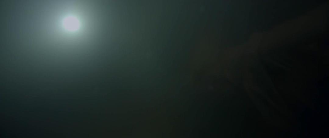 Black Water Abyss 2020 1080p Bluray DTS-HD MA 5 1 X264-EVO