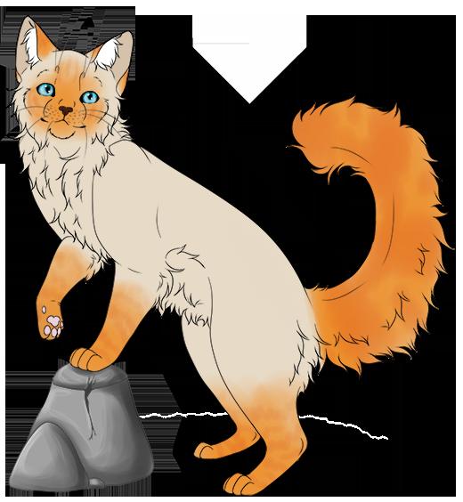Shadowclan Kittenhub! 02xj8D8N_o