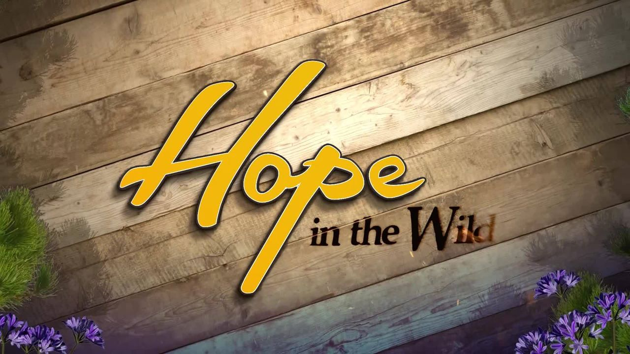 Hope in the Wild S02E07 Complicated Cat Care 720p WEB x264-LiGATE