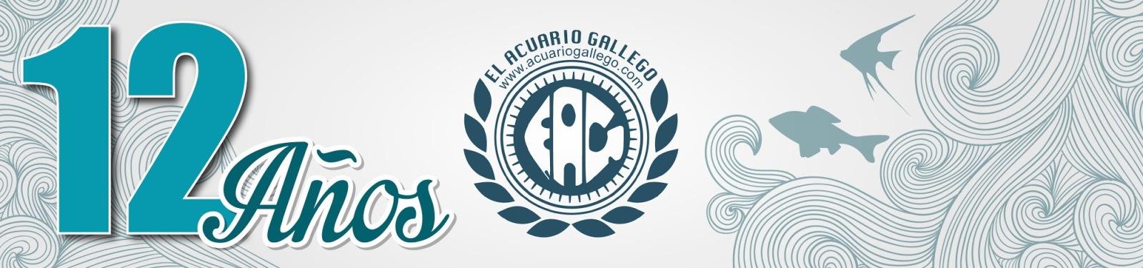 El Acuario Gallego