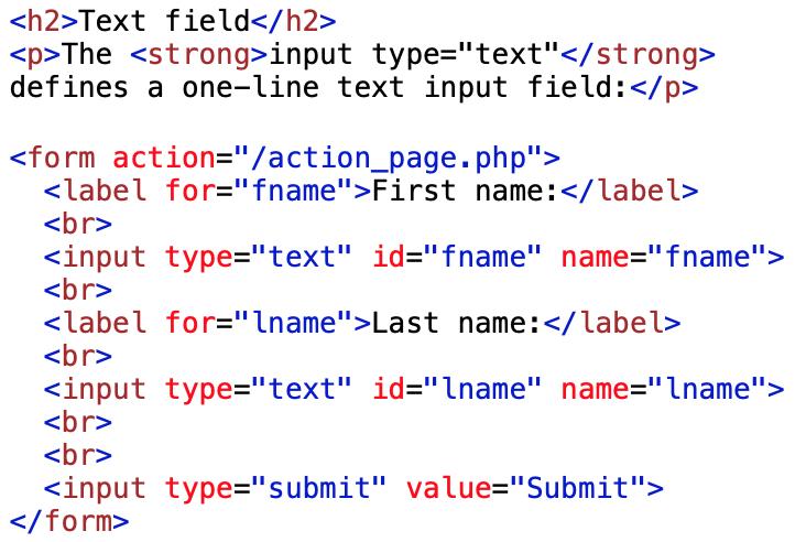 text type input render