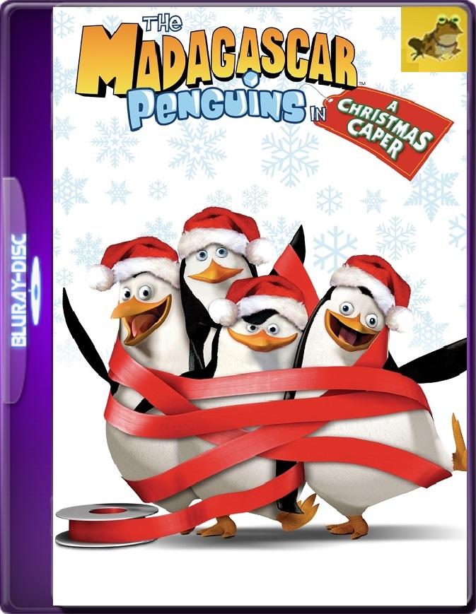 Los Pinguinos De Madagascar En Travesura Navideña (2005) Brrip 1080p (60 FPS) Latino