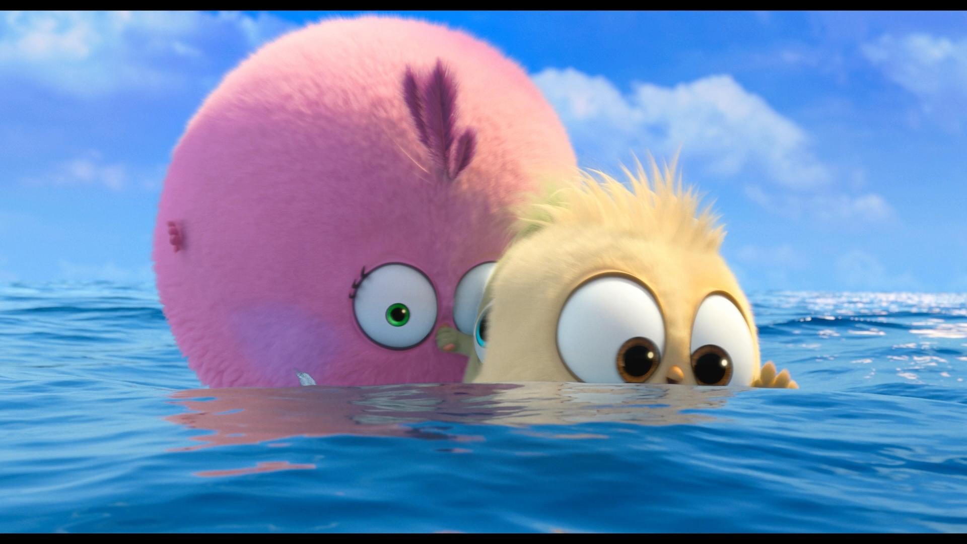 Angry Birds Duology 1080p BluRay REMUX AVC DTS HD MA 7.1 LameyHost ثنائية الطيور الغاضبة مدبلج للعربية تحميل تورنت 4 arabp2p.com