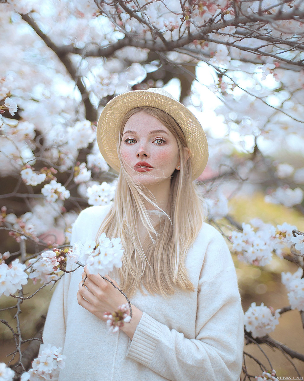Spring in Tokyo by Xenia Lau