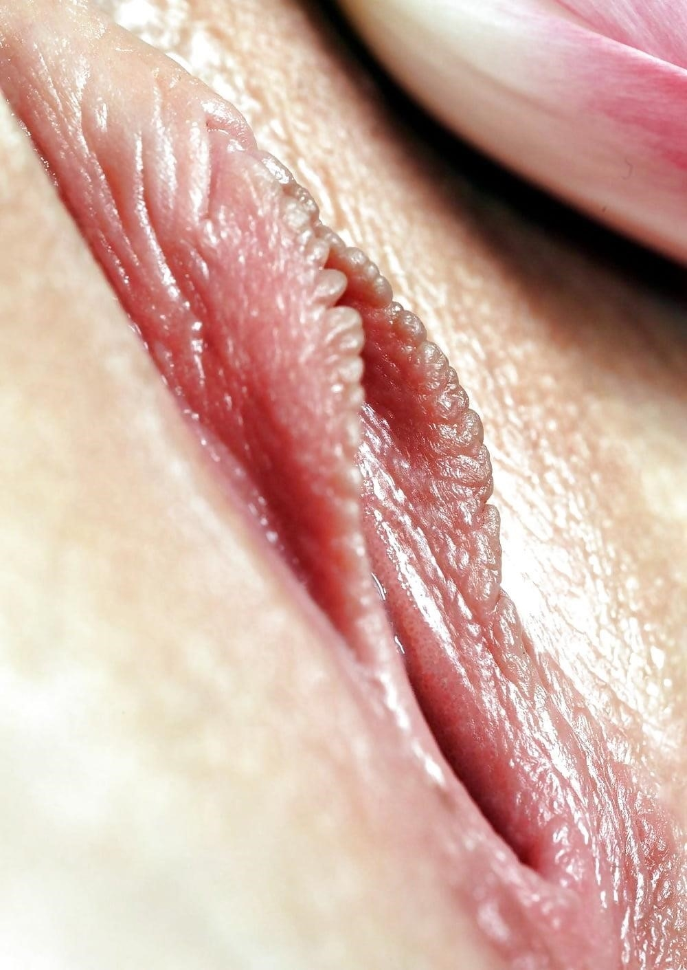 Women with large clitoris-5665