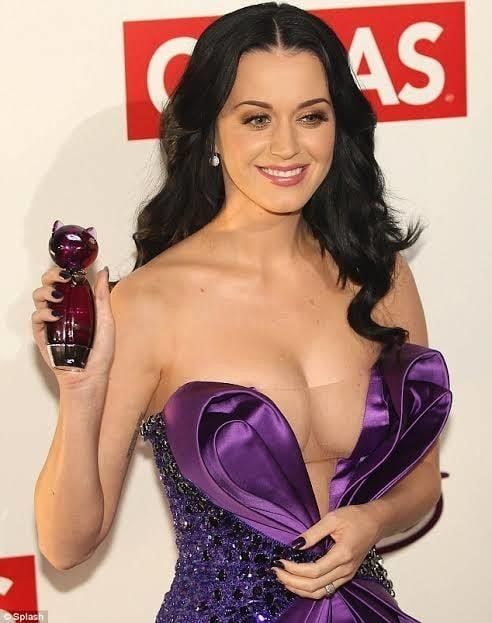 Katy perry sexy nude-2245