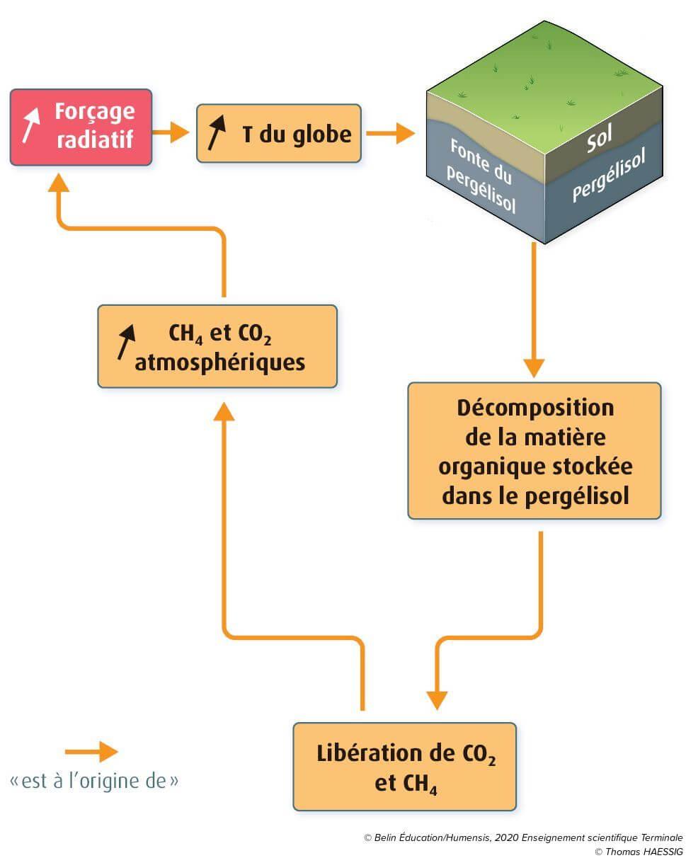 Boucle de rétroaction du pergélisol / permafrost