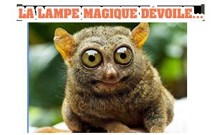 LA LAMPE MAGIQUE HQqpiVHK_o
