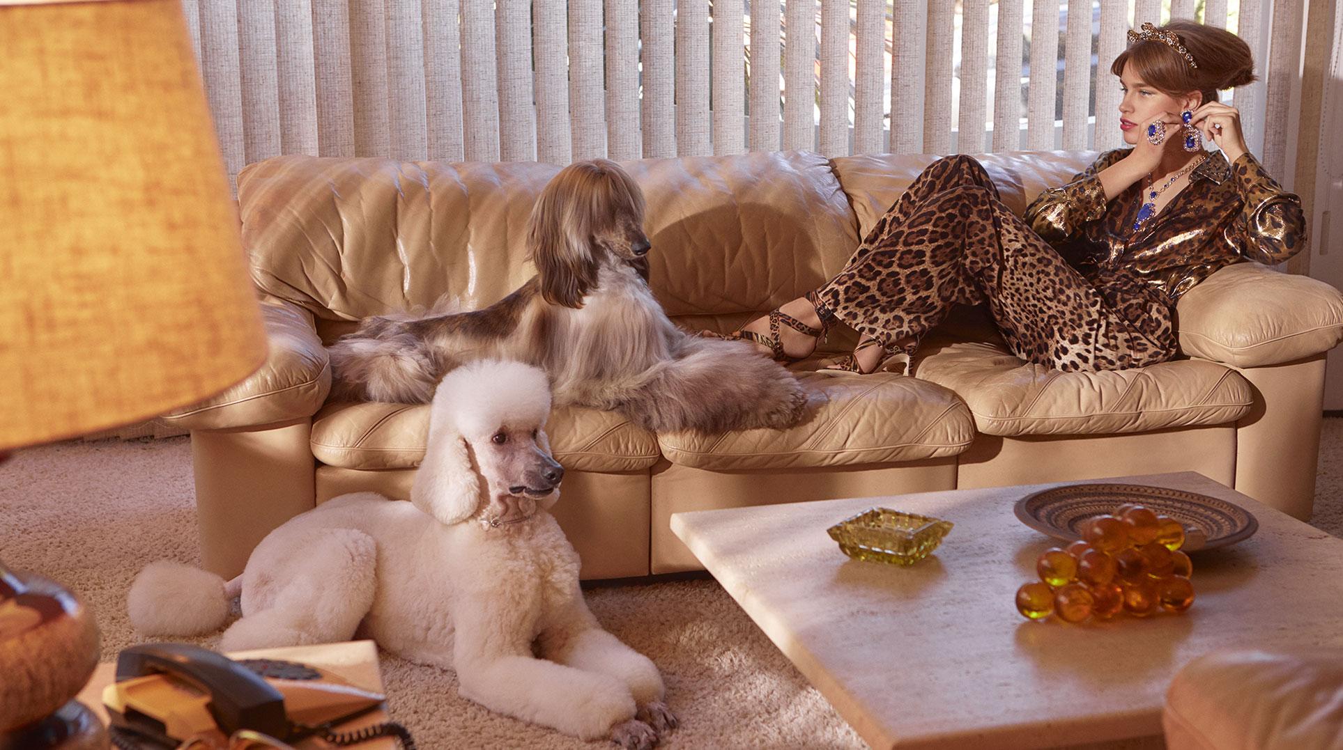 Модная девушка с собачкой / фото 05