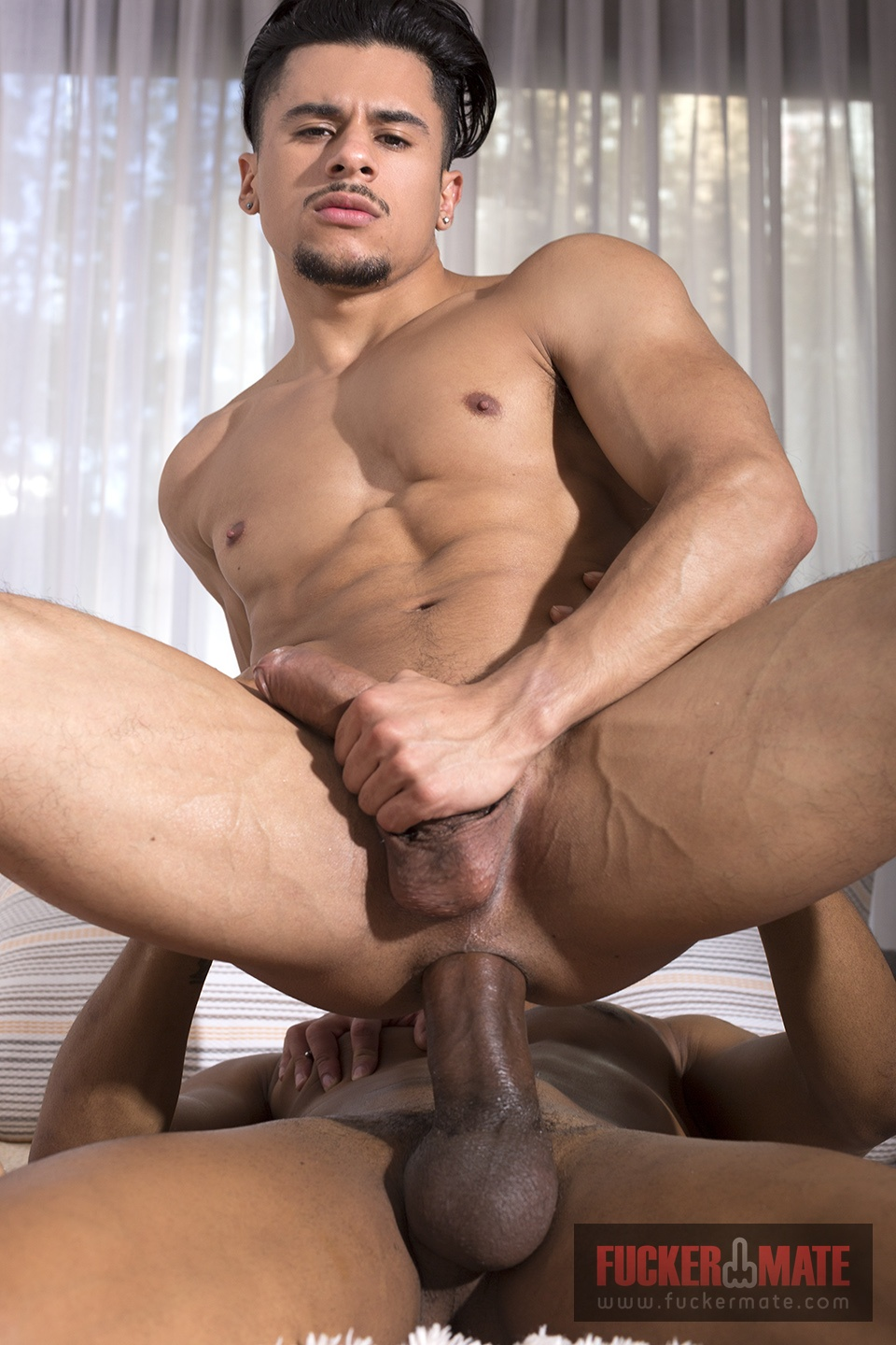 latino ttbm rencontre gay grosse bite
