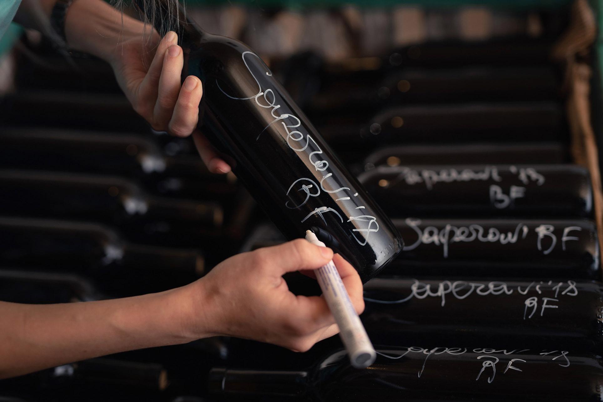 виноделы - сбор урожая и изготовление вина / фото 19