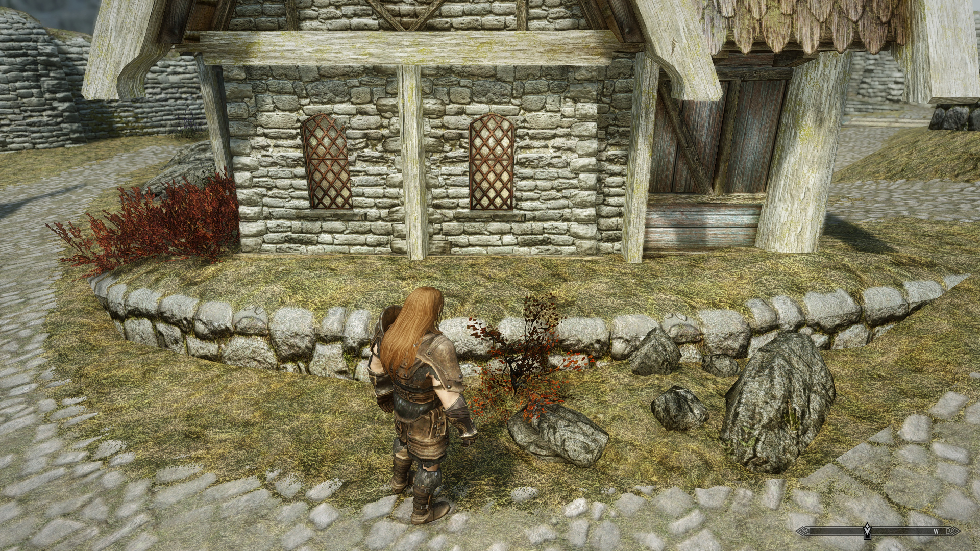 solved] Which mod adds these bushes / trees? - Skyrim