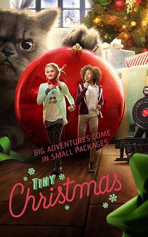 Tiny Christmas 2017 WEBRip XviD MP3-XVID