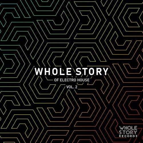 VA - Whole Story Of Electro House Vol. 2 (2019)