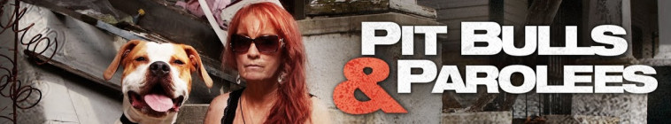 Pit Bulls and Parolees S14E05 Treasure Not Trash 720p WEB x264-CAFFEiNE