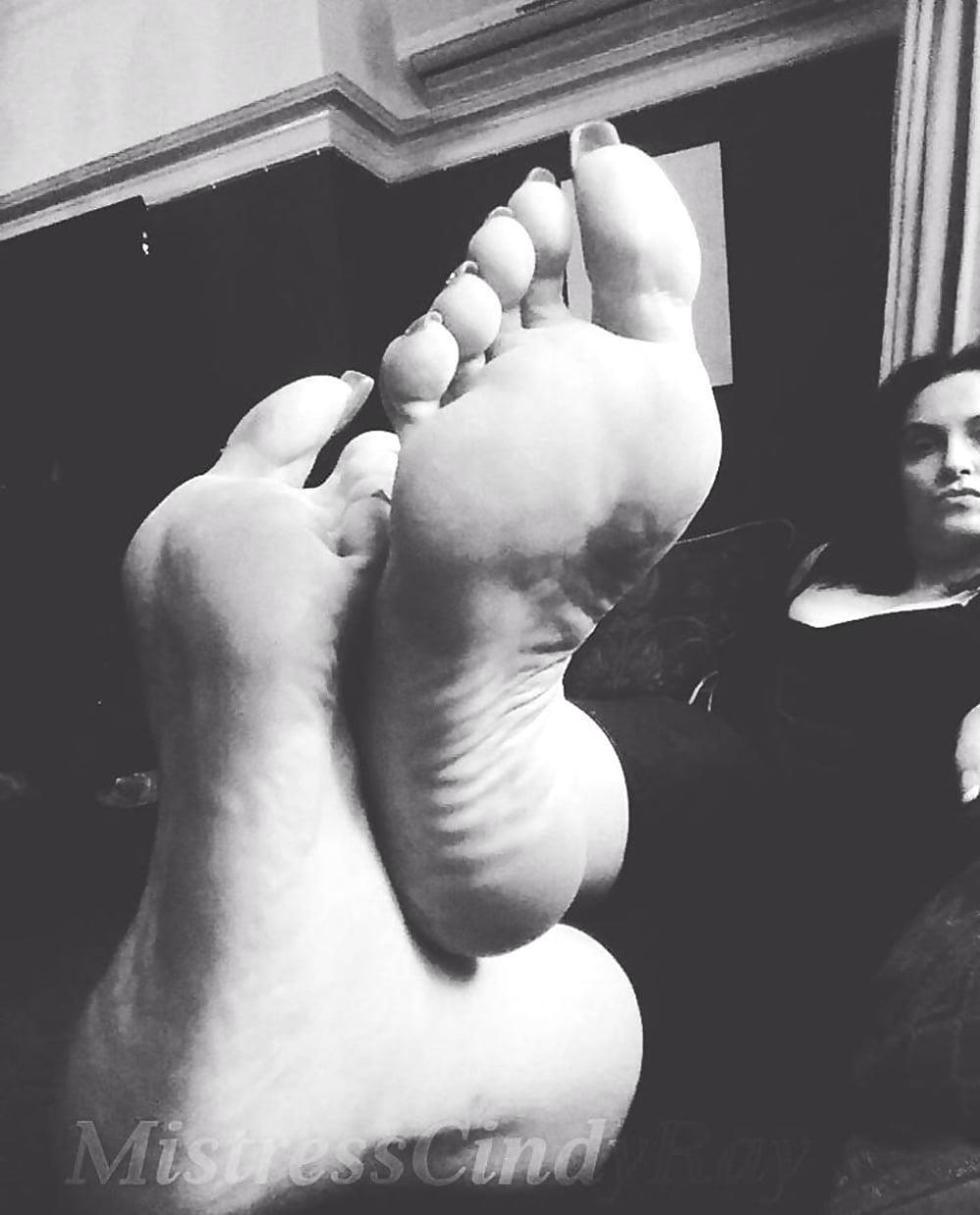 Mistress cindy feet-2523
