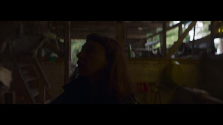 Nobody Knows Im Here 2020 1080p WEB H264-CRYPTIC
