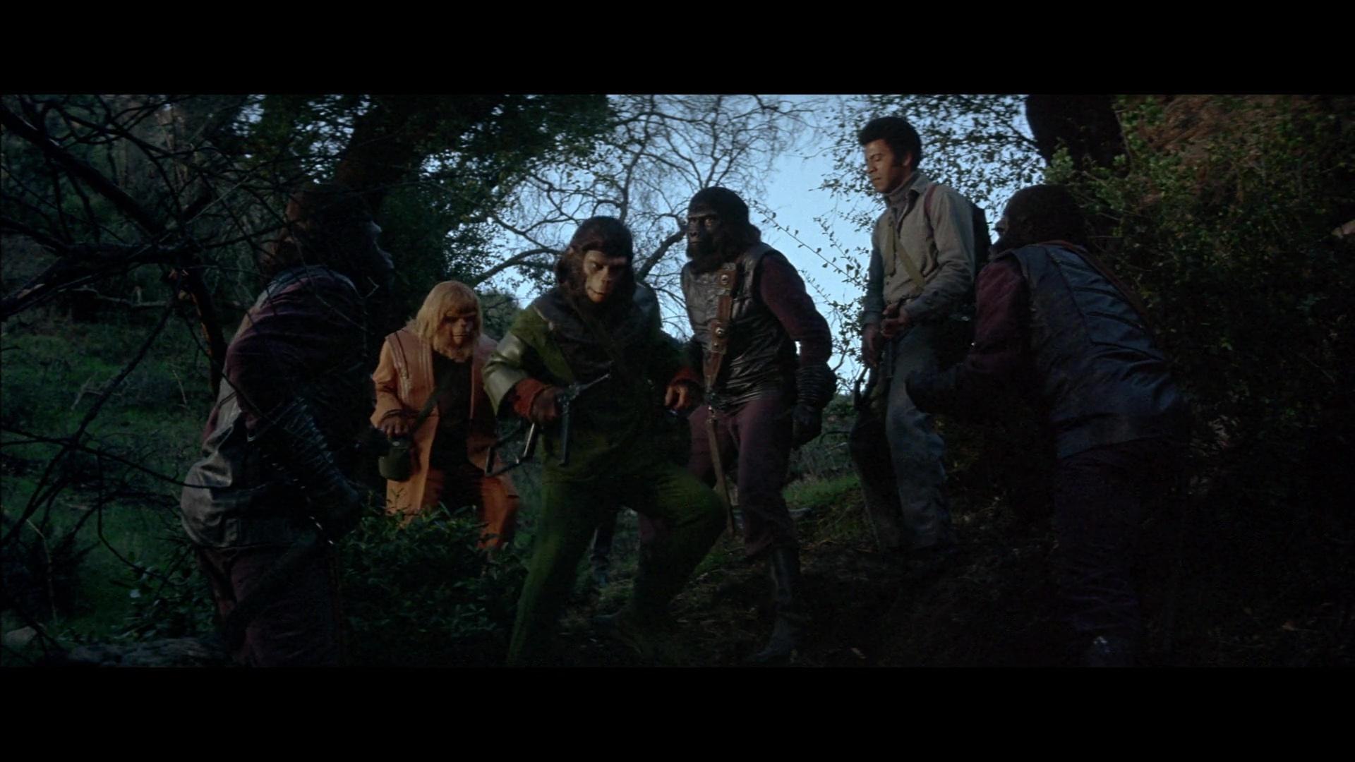 La Batalla Por El Planeta De Los Simios 1080p Lat-Cast-Ing 5.1 (1973)