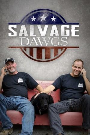 Salvage Dawgs S11E02 Maryland Strip Mall 720p WEB x264-CAFFEiNE