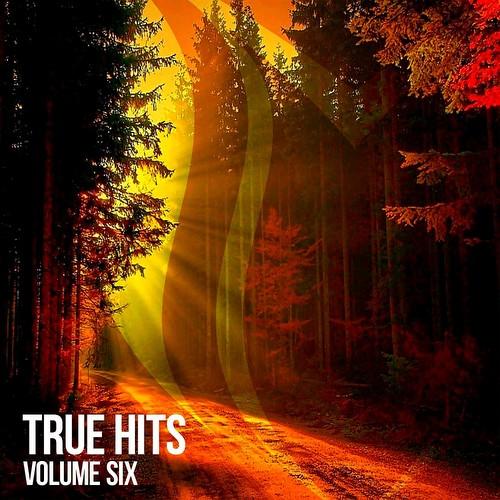 VA - True Hits Vol 6 (2021)