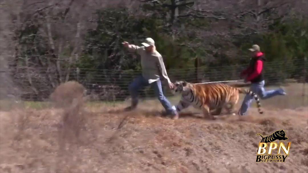 Tiger King The Movie 2020 1080p WEB-DL DD2 0 H 264-EVO