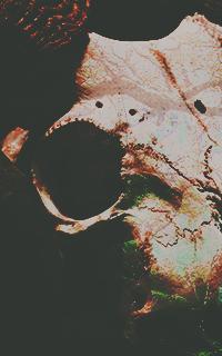 ☾ BOOK OF BEASTS DozRUkUE_o