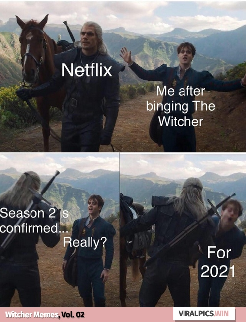 30+ The Witcher Netflix Funny Memes for True Fan of the Game & Show 30