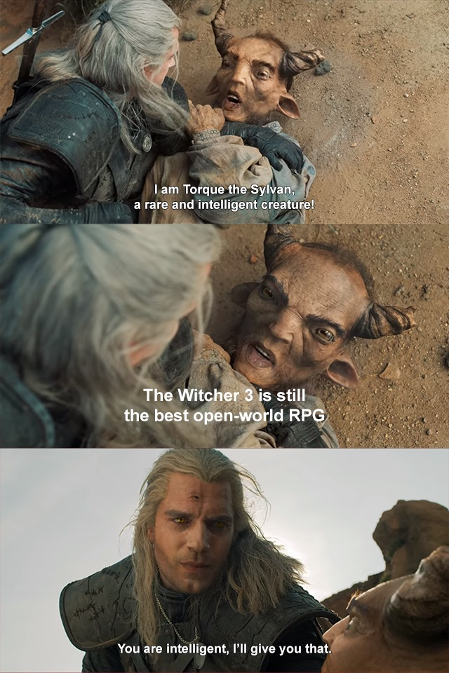 21 Witcher Memes Netflix for True Fans, Memes You can Toss a Coin to Vol 03 14