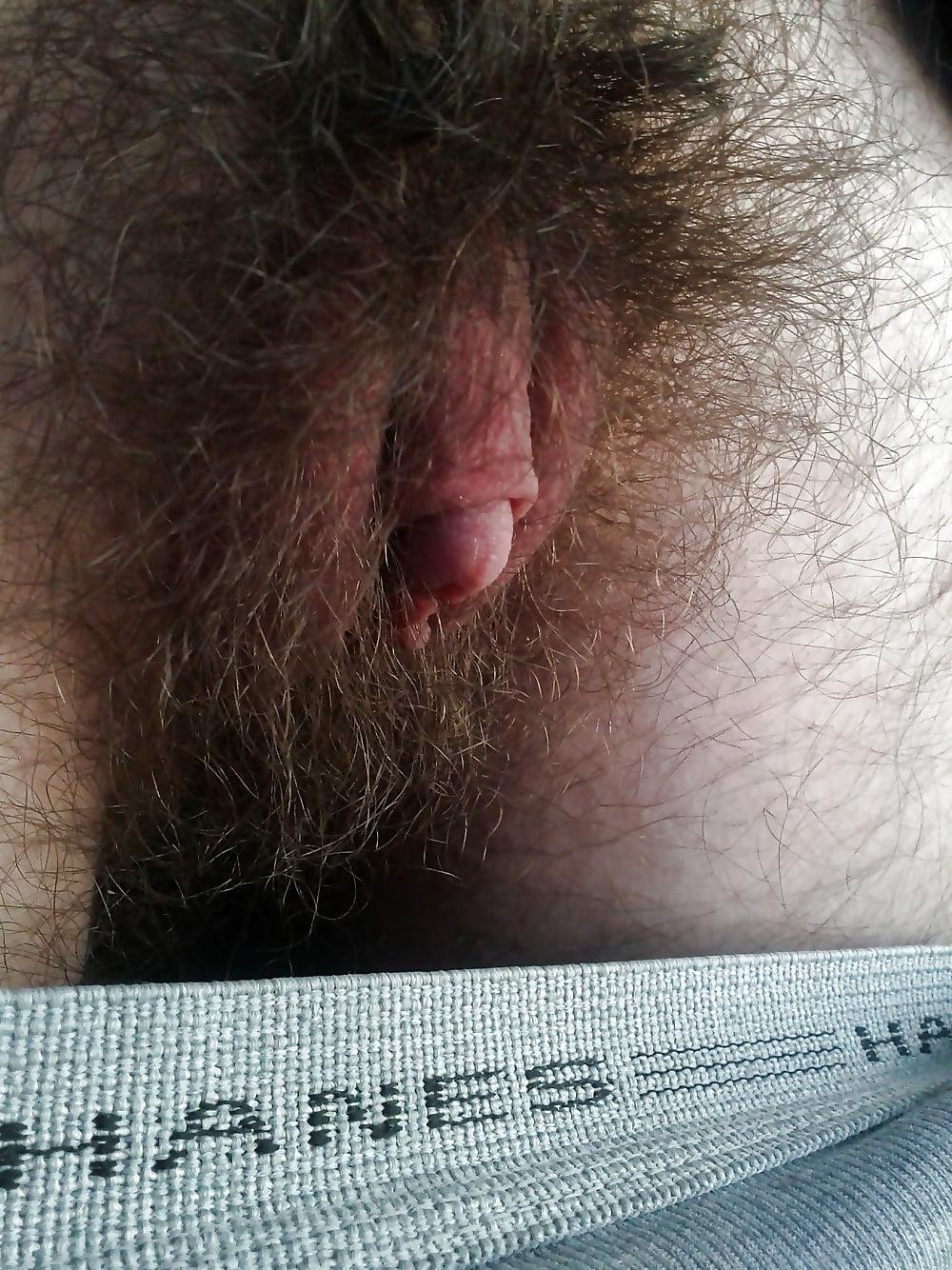 Porn large clitoris-2491