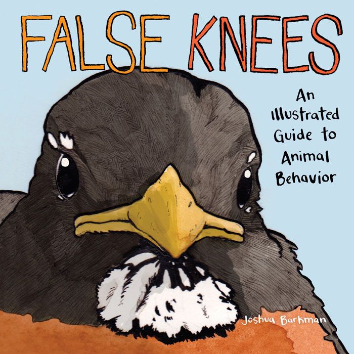 False Knees (2019)