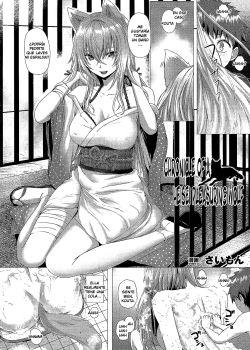 Heisei Hourouki Chronicle of a Heisei Pleasuring Wolf