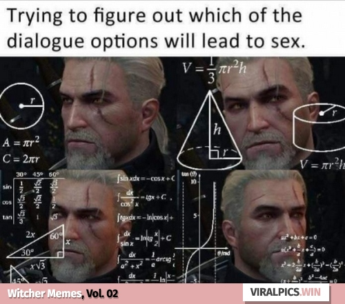 30+ The Witcher Netflix Funny Memes for True Fan of the Game & Show 22