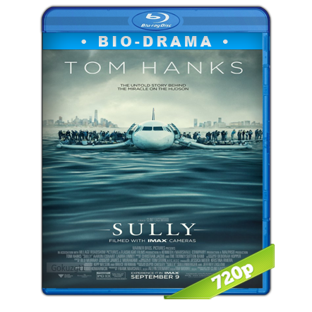 Sully Hazaña En El Hudson (2016) BRRip 720p Audio Trial Latino-Castellano-Ingles 5.1