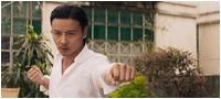 Мастер Z: Наследие Ип Мана / Master Z: Ip Man Legacy / Cheung Tin-Chi (2018/BDRip/HDRip)
