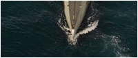 Подлодка U-235 / Torpedo (2019/BDRip/HDRip)