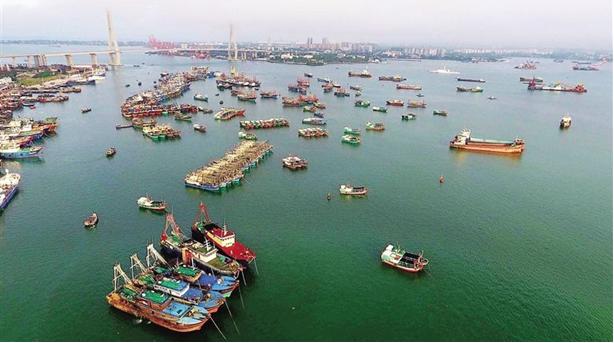 China's Marine Economy Posts Steady Growth