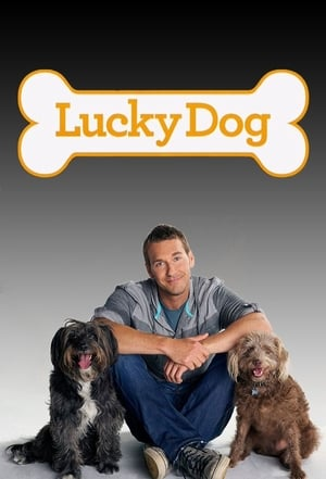 Lucky Dog S01E07 720p WEB x264-LiGATE