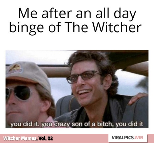 30+ The Witcher Netflix Funny Memes for True Fan of the Game & Show 18