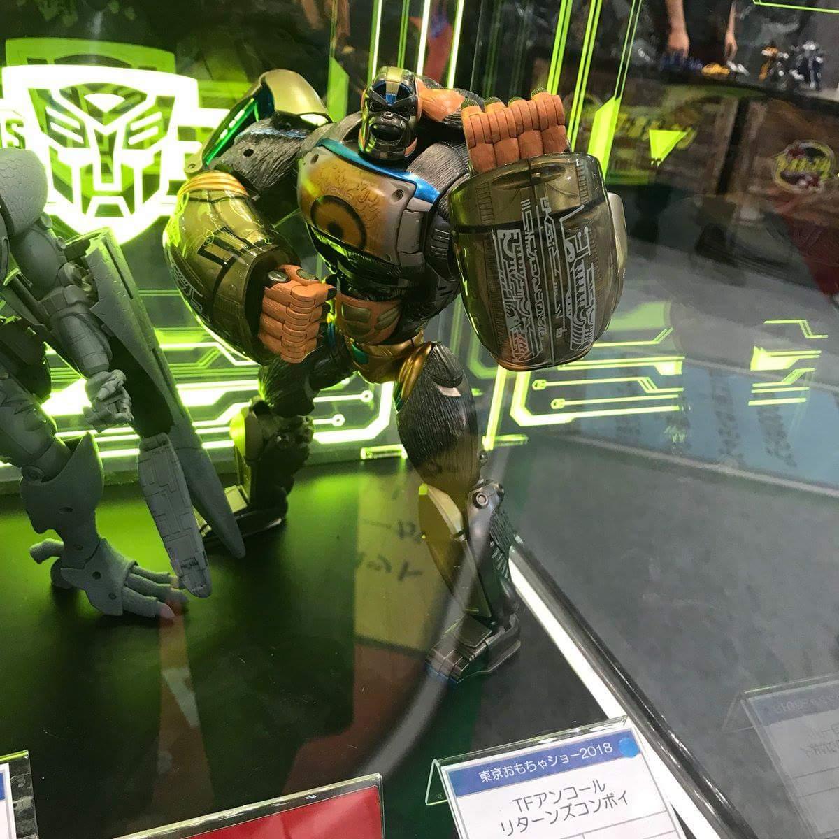 Réédition de Jouets Transformers: Beast Wars & Beast Machines - Page 2 MDQvVQKX_o
