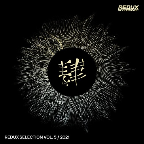 VA - Redux Selection Vol 5 / 2021 (2021)