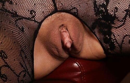 Fat black clits-6447