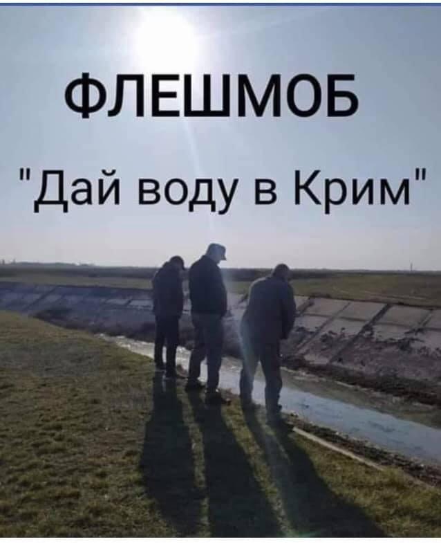 1D0xENBK_o.jpg