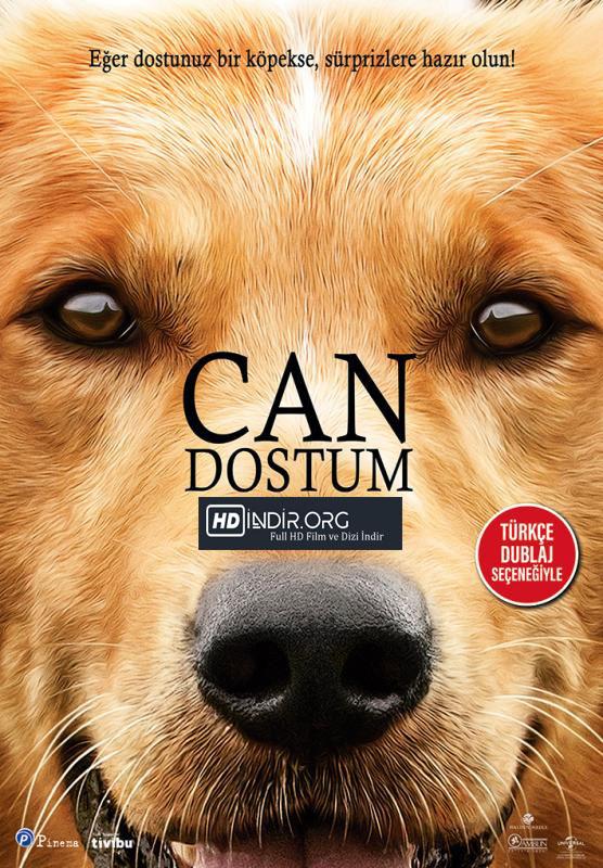 Can Dostum - A Dogs Purpose indir (2017) Türkçe Dublaj 720p Tek Link