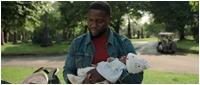 Отцовство / Fatherhood (2021/WEB-DL/WEB-DLRip)
