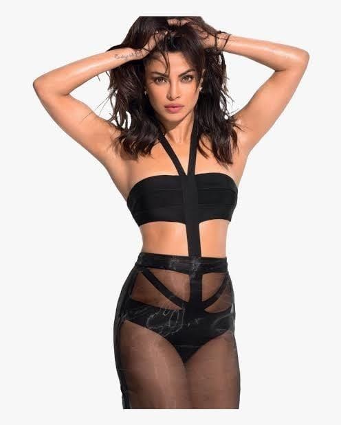 Priyanka chopra ka sex picture-3254
