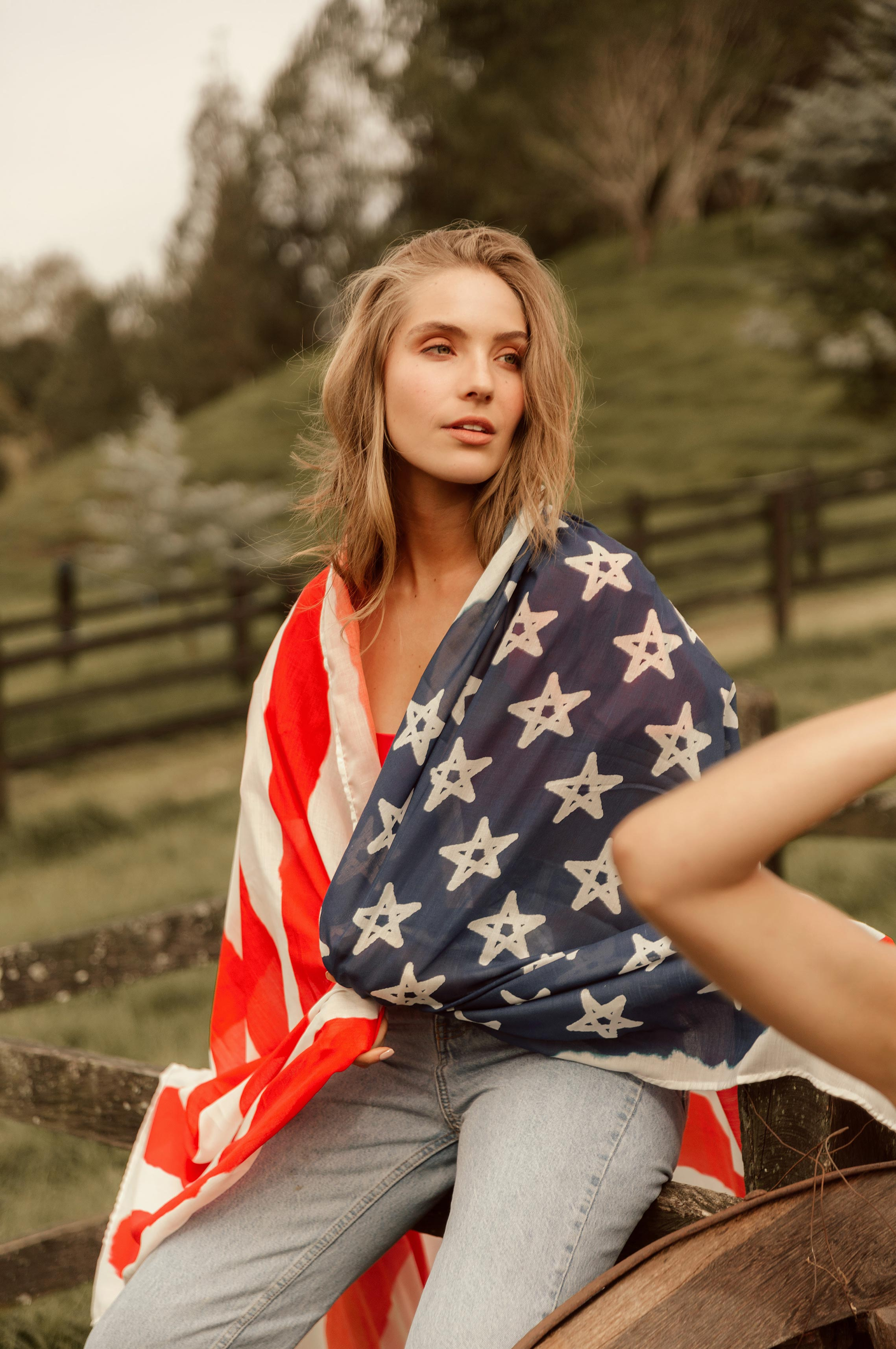 Девушки в купальниках с американским флагом / фото 03