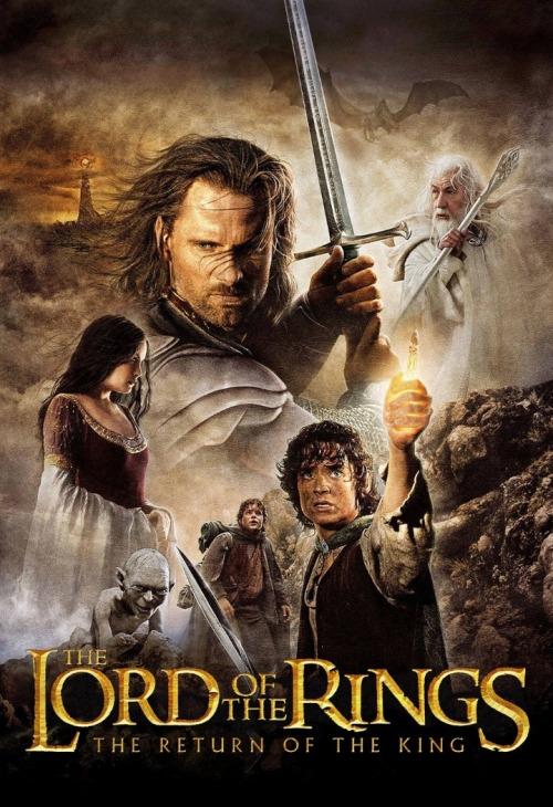 Władca Pierścieni: Powrót króla / The Lord of the Rings: The Return of the King (2003) PL.EXTENDED.BDRip.x264-AiDS / Lektor PL