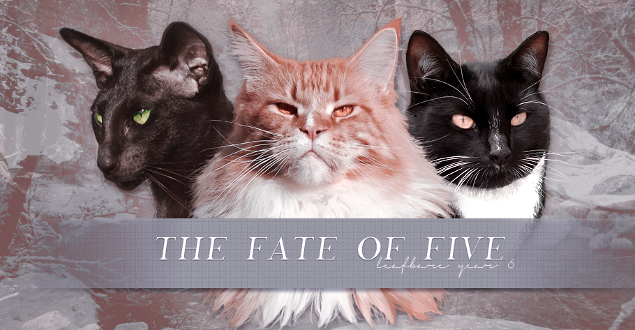 The Fate of Five
