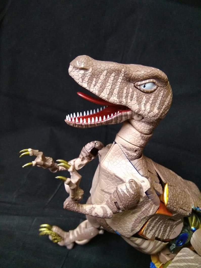 [Masterpiece] MP-41 Dinobot (Beast Wars) - Page 2 6SCq8Iz4_o