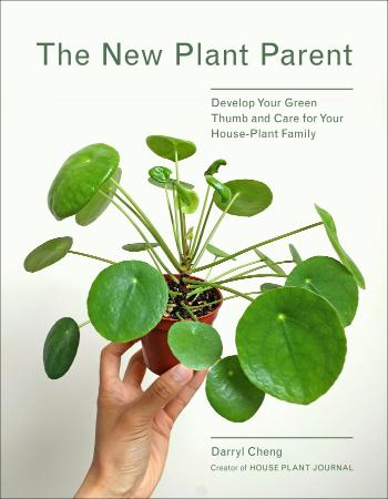 The New Plant Parent   Develop Your Green Thumb and Care for Your House Plant Family